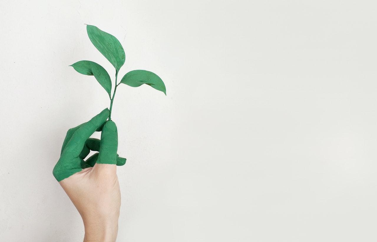 Duurzamer leven? Volg deze simpele tips